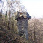 Il fungo di terra di Rezzago