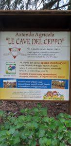 """Visita a """"Le Cave del Ceppo"""""""