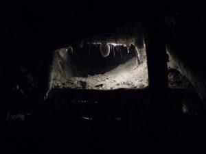 muffa delle miniere
