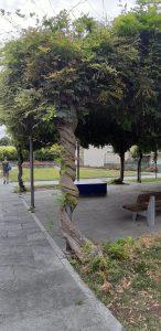 Cosa fare a Tirano coi bambini: visitare i parchi
