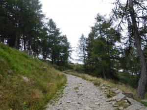 Sentiero dell'escursione al Monte Legnoncino