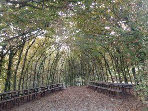 Passeggiate nel Parco del curone coi bambini: museo del parco del curone