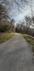 Escursione sul Monte Cornizzolo: la strada asfaltata