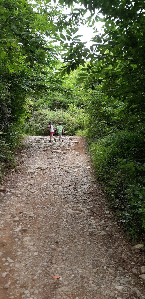 sentiero da Erba all'Alpe del Vicerè: percorso nella Valle Bova