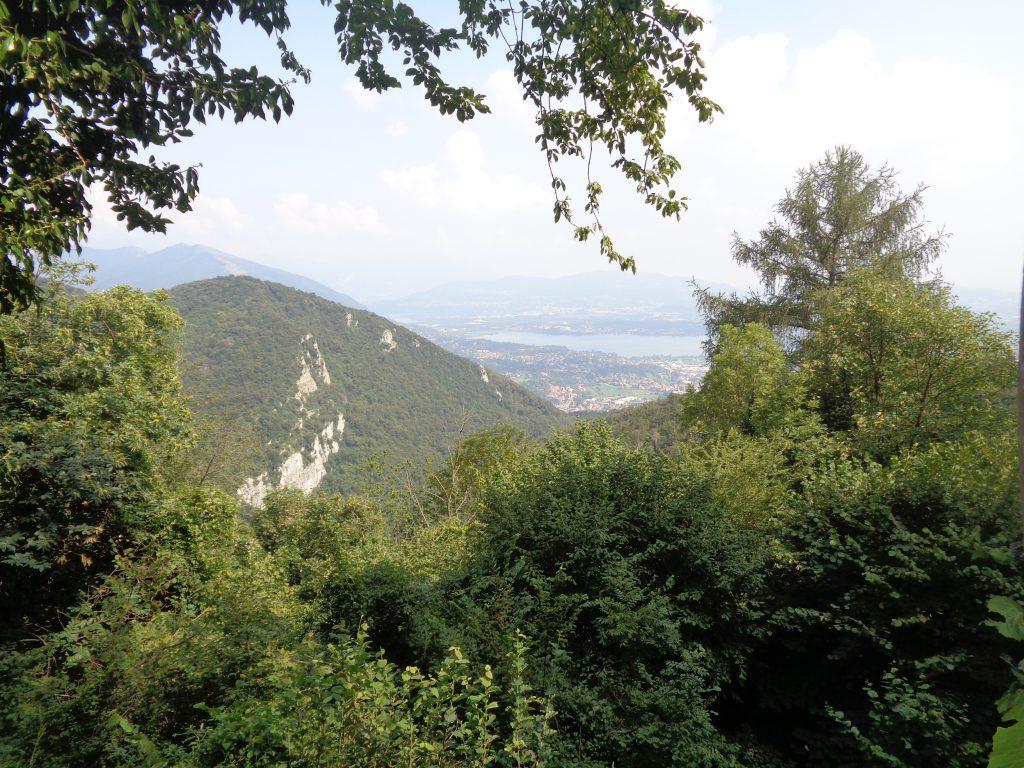Panorama alpe del vicere