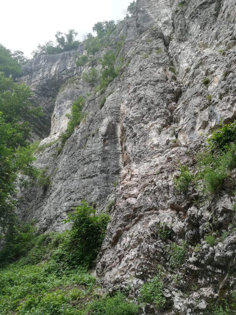 Parete calcarea della Valle Bova