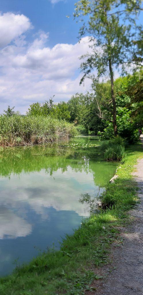 Canneto del lago di sartirana