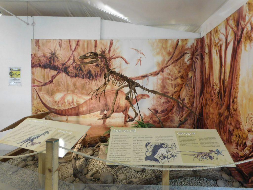 museo paleontologico :vedere i dinosauri in lombardia